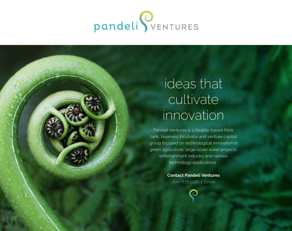 Pandeli Ventures Website Design