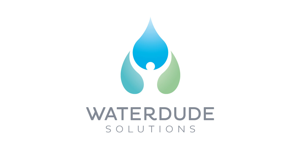Waterdude Solutions logo design