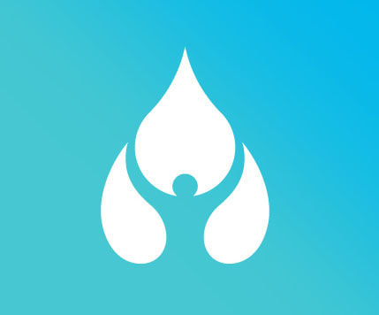 Waterdude Solutions logo mark