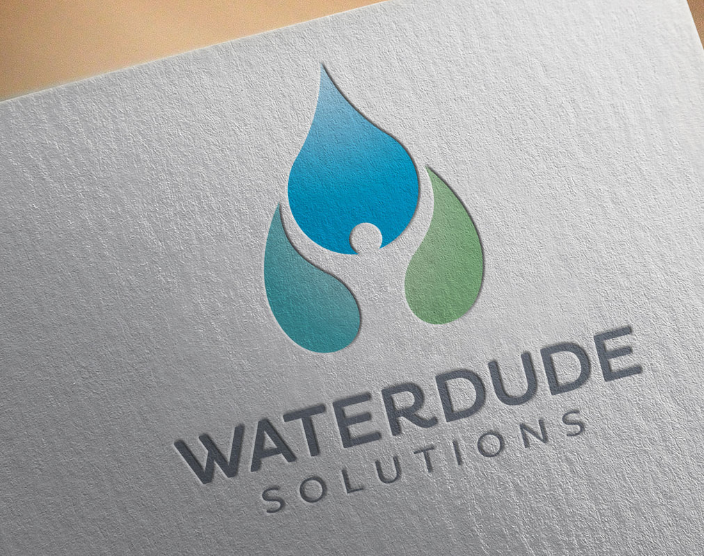 Waterdude Solutions logo design on letterhead