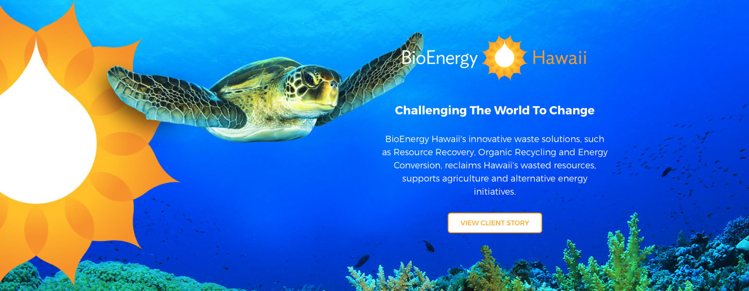 Kinetic Branding BioEnergy Hawaii banner