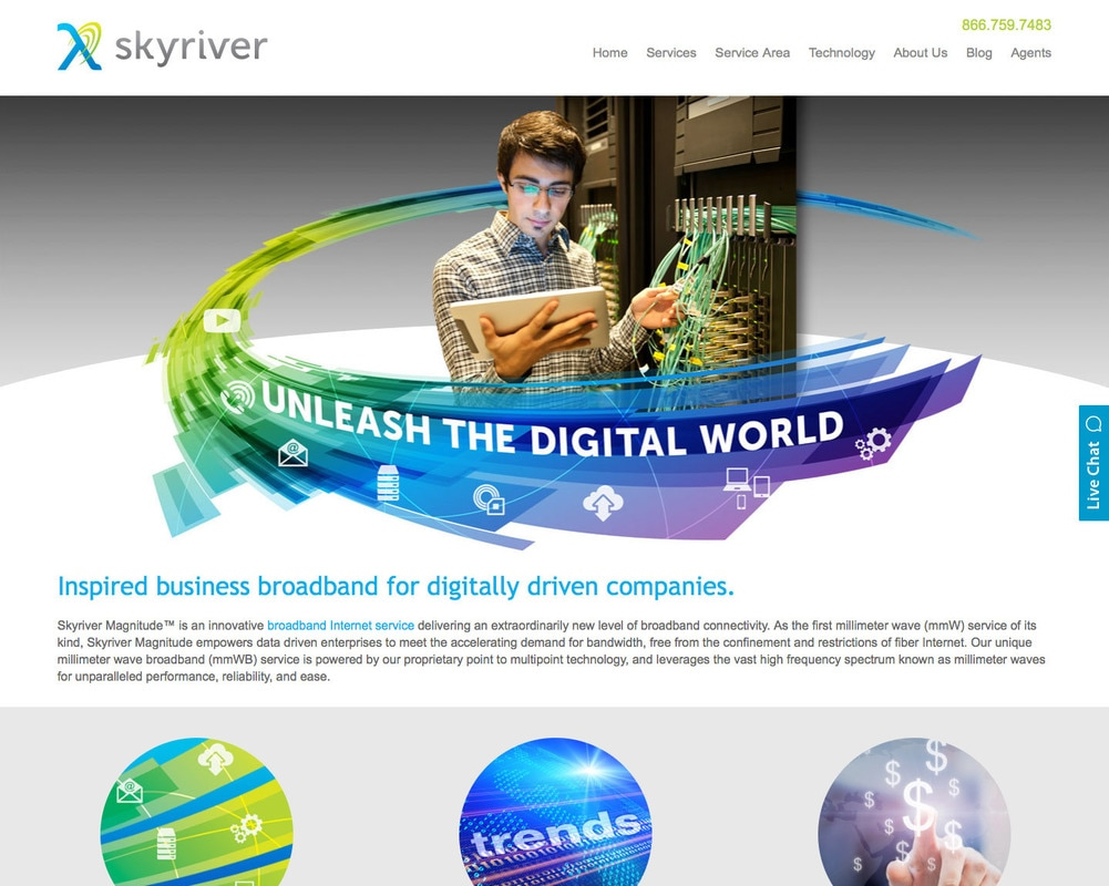 Skyriver Website Design